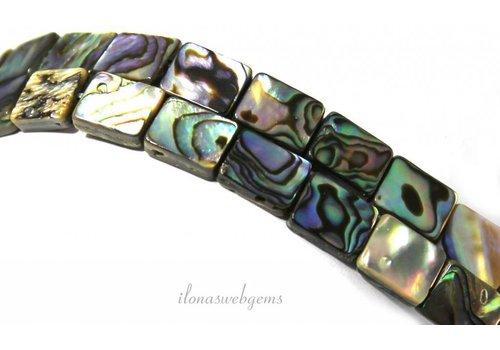 Abalone Perlen um 10x8x3mm