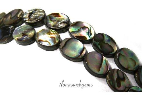 Abalone beads oval around 10x8x2mm