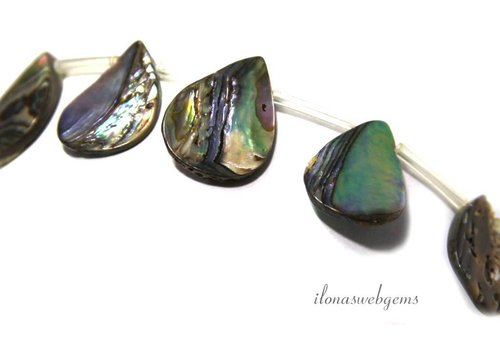 Abalone druppels ca. 20x15x3mm
