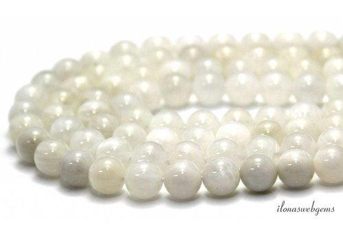 Rainbow Moonstone beads around ca. 8mm