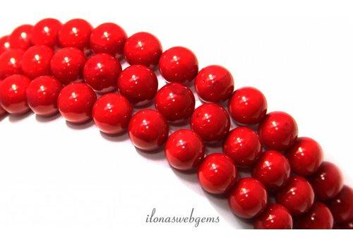 Bloedkoraal kralen rood rond ca. 10mm