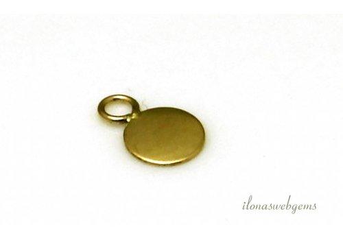 Gold filled labeltje ca. 5mm