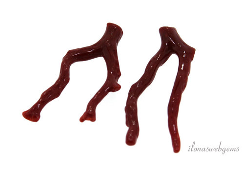 Bloedkoraal takjes set 'Corallium Rubrum' ca. 35-40mm