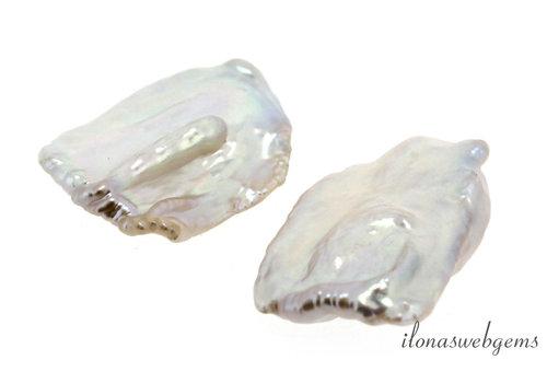 1 Paar Biwa-Perlen im Format 24x16x5mm