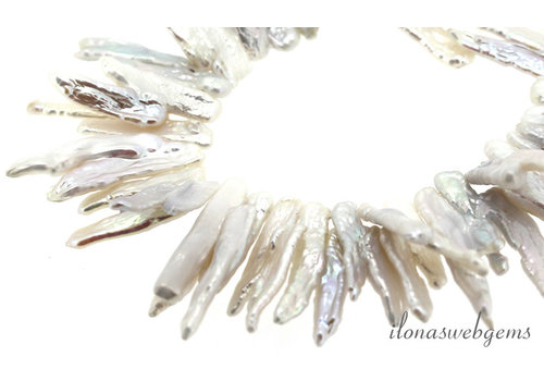 Biwaparels white around 21x11x3mm