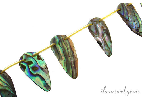 Abalone kralen ca. 29x13mm