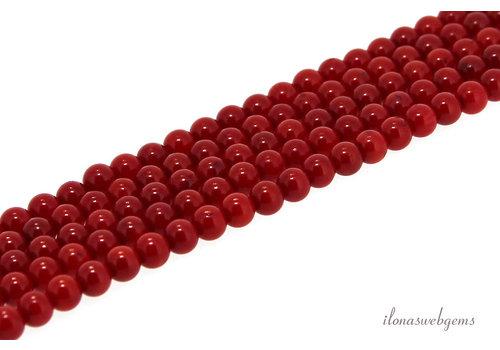 Bloedkoraal kralen rood rond ca. 3.5mm