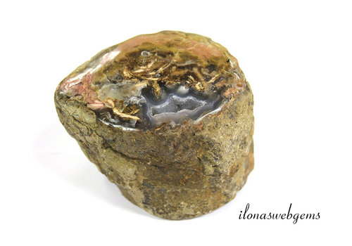 Chalcedony in a petrified wooden base