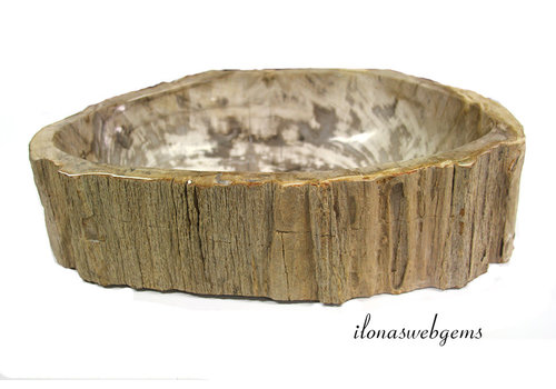 Versteend houten wasbak