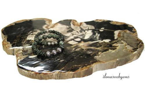 Petrified wooden disc