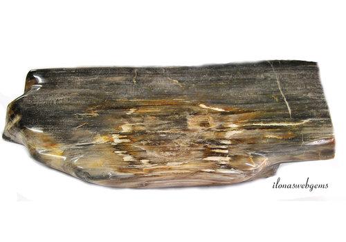 Petrified wooden base