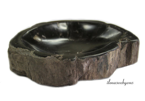 Petrified wooden bowl