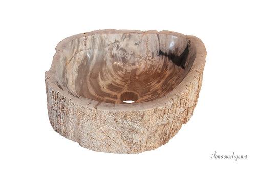Petrified wooden sink