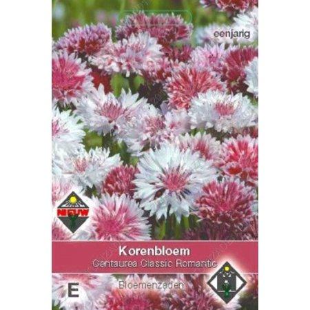 Van Hemert & Co Korenbloem (Centaurea cyanus) 'Classic Romantic'