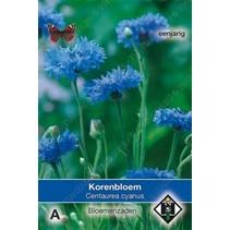 Korenbloem 'enkel blauw'