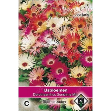 Van Hemert & Co IJslboem (Dorotheanthus b.) 'Sunshine Mix'