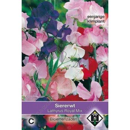Van Hemert & Co Siererwt (Lathyrus odoratus) 'Royal Mix'