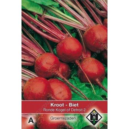 Van Hemert & Co Biet - Kroot Kogel of Detroit 2