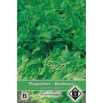 Raapstelen - Bladmoes Gewone groene