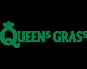 Queens Grass