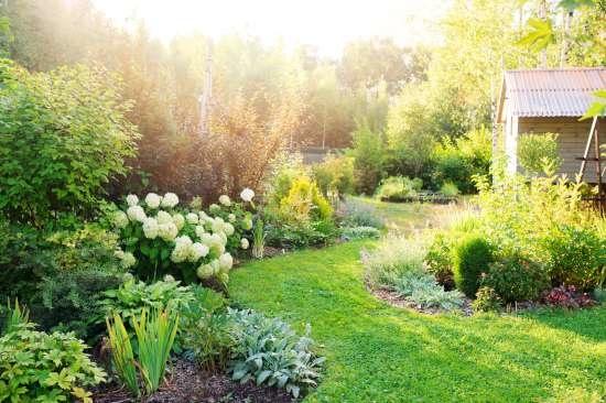 Een tuin aanleggen op kleigrond? Zo doe je dat