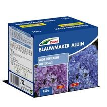 Blauwmaker Hortensia - Aluin