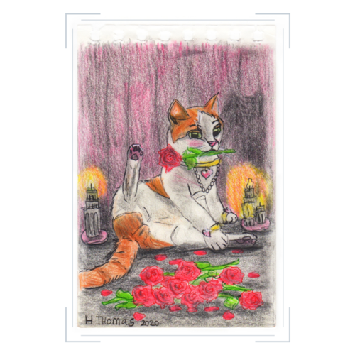 Valentijnskaarten Nemo en romantische rozen - set van 5