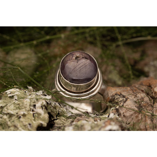 Sterrobijn ring 'Circum'