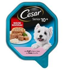 Cesar 14x cesar alu senior kalf / rijst in gelei