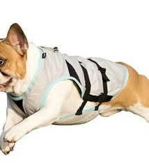 Suitical Suitical dry cooling vest hond  zilver