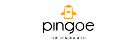 Pingoe