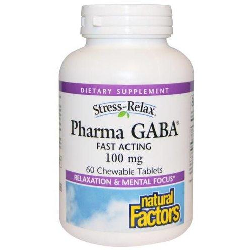 Natural Factors Schnellwirkendes GABA, 100 mg (60 Kautabletten)