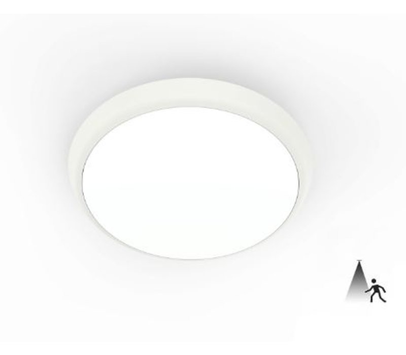 12W, Ø 25 cm,  Notbeleuchtung, DL-AL08-10-12W-E