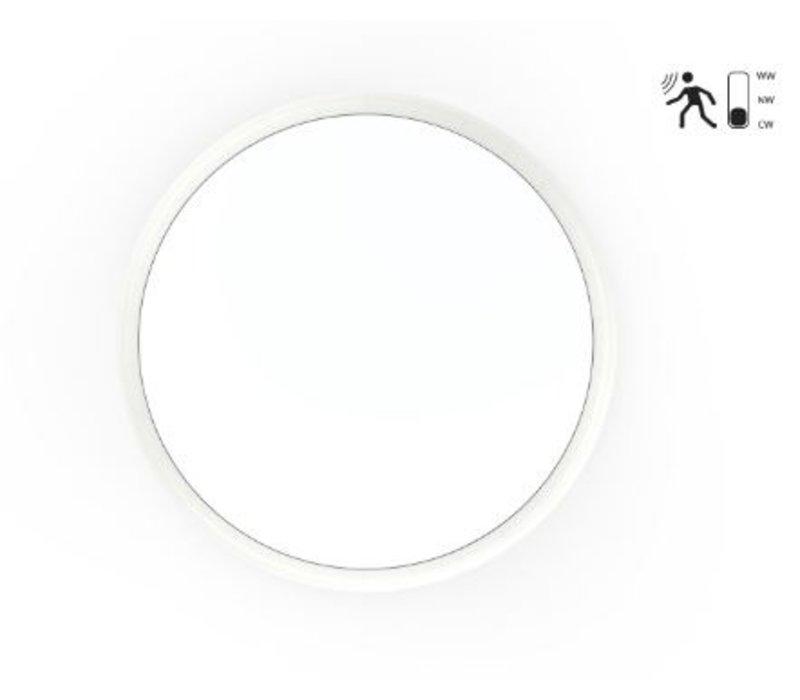12W,  Ø 25 cm,  Not-  und Bewegungsmelder, DL-AL08-10-12W-MS