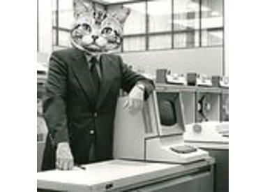 Catnip electronics