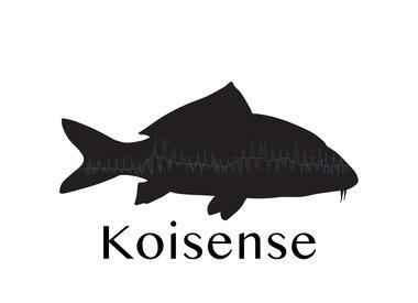Koisense™