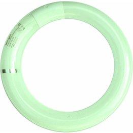 Leuchtstoffröhre - NEU