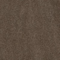 Quadra Sahara Bruin S62008 MP