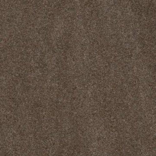 Pfleiderer Quadra Sahara Bruin S62008 MP