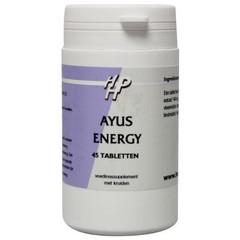 Holisan Ayus Energie