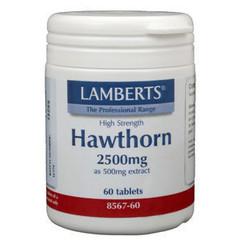Lamberts Crataegus 2500 mg (Weißdorn)