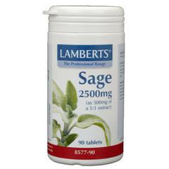Lamberts Salbei (Salbei)