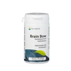 Springfield Gehirnbogen