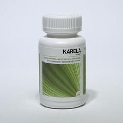 Ayurveda Health Karela Momordica