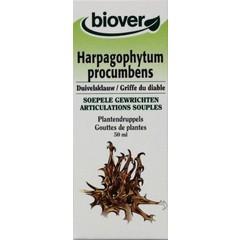 Biover Harpagophytum procumb