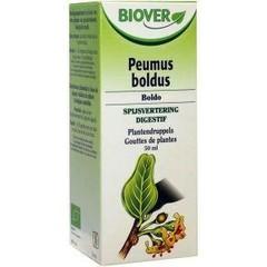 Biover Peumus boldus