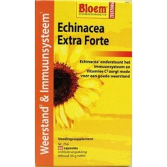 Bloem Echinacea extra forte Widerstand