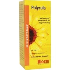 Bloem Polycula