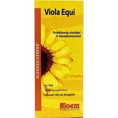Bloem Viola equi