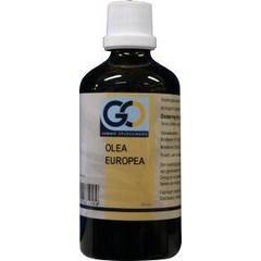 GO Olea europea